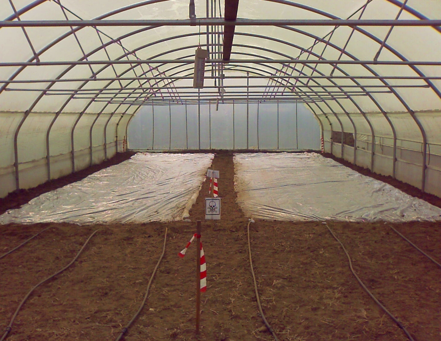 photo-greenhouse
